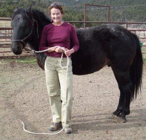 Welcome a New Member of the Herd – Corazon de la Montana