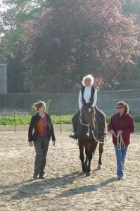 What Does Equine Facilitated Learning and Coaching Mean?