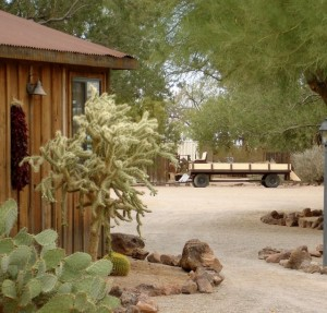 Wild Women Desert Retreat