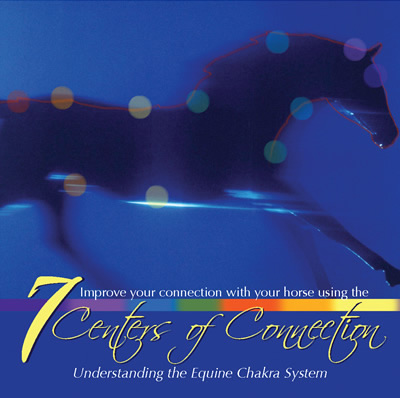 Chakras and Horses