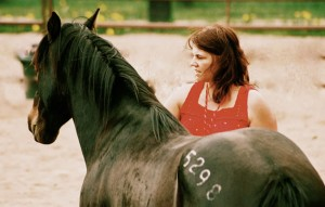 Horse Wisdom Summer Programs in the Rocky Mountains