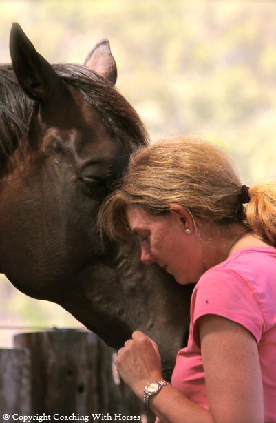 Divine Alignment through the Wisdom of Horse
