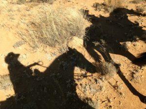Kathy Pike Desert Riding Retreat