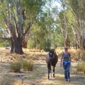 Equine Facilitated Learning Australia
