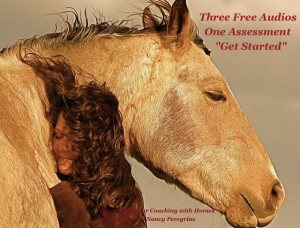 Three Free Audios - Coaching with Horses