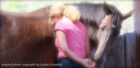 Advanced Tools for Shifting Limiting Patterns and Expanding Consciousness with Horse