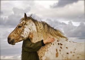 Personal Growth with Horse - Kathy Pike