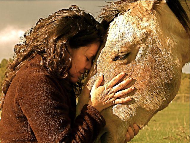 Alejandra Coaching with Horses EFL Conference 2015