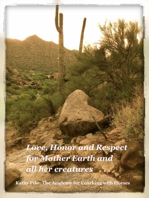 Love, Honor and Respect for Mother Earth and all her creatures...