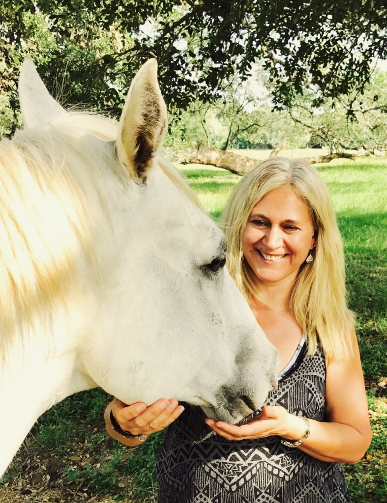 Sandi Howlett Equine Conference and Retreat