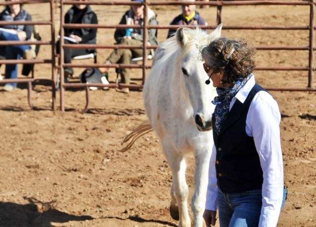 Kathy Pike teaches the dance with horse