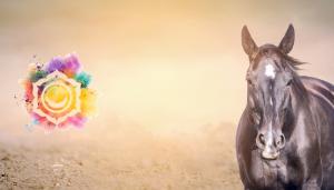 Spiritual Healing Retreat with Horses