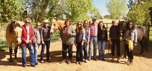 Colorado Equine Facilitated learning Programs