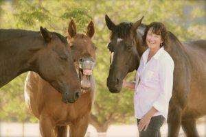 Kathy Pike Horse Coaching Programs Colorado