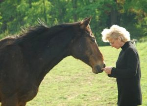 Personal Growth with Horses
