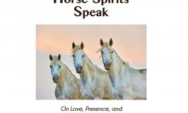 Horse Spirits Speak