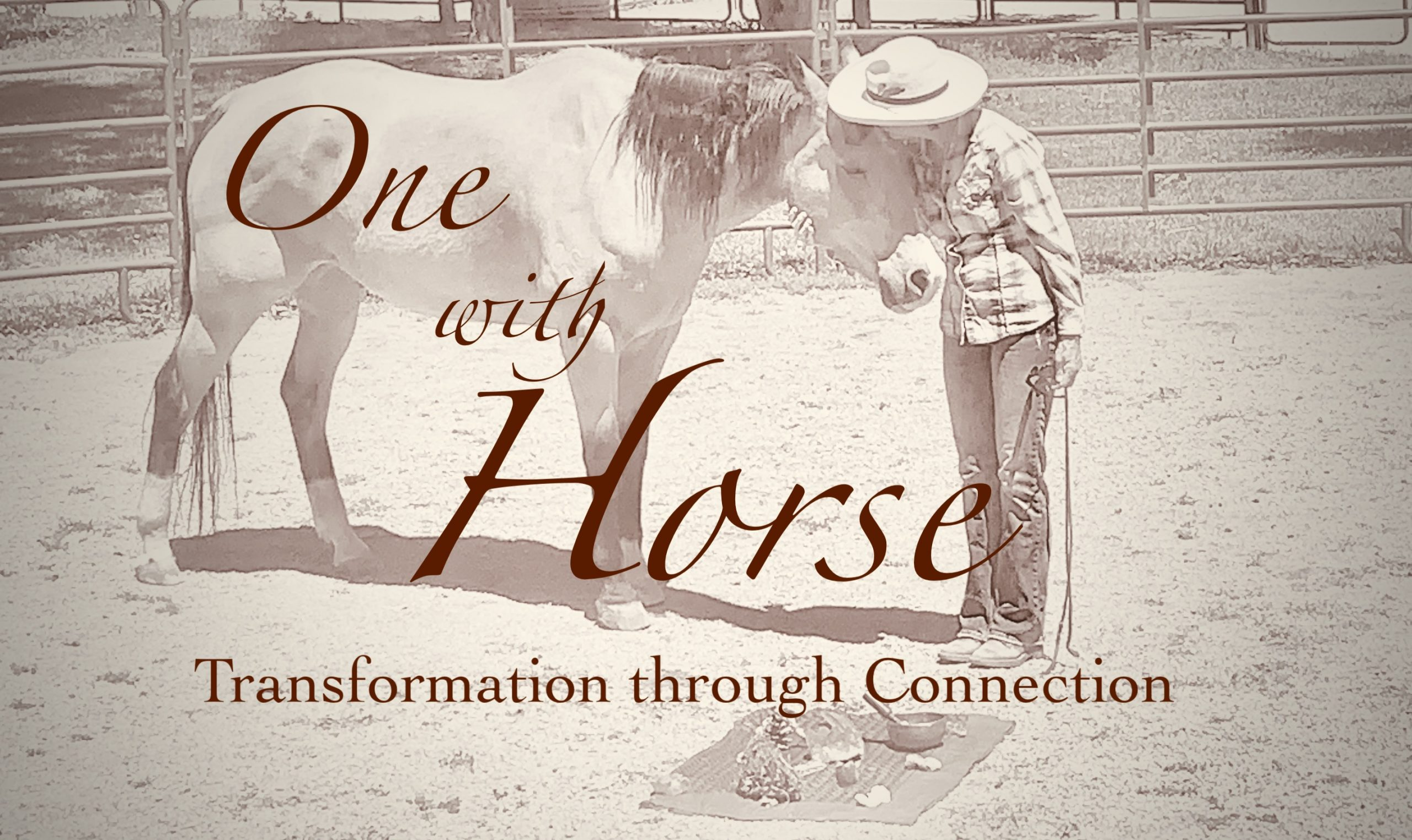 Transformation with Horses