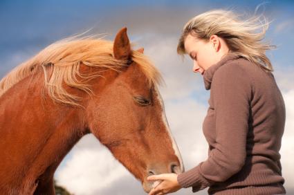 Coaching with Horses: Emotional Intelligence and Energy Mastery Online Training for Equine Facilitators