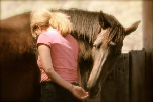 Now offered as an online training program- Coaching with Horses - Equine Facilitated Learning Course